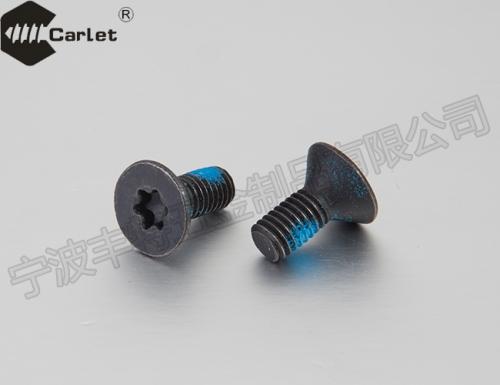 内六角花形沉头螺钉(GBT2673-2000)  T20 点胶