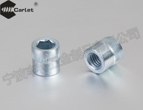 特殊螺栓 特殊嵌件